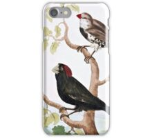 Crimson Crested and Spotted Sided Grosbeaks iPhone Case/Skin
