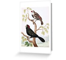 Crimson Crested and Spotted Sided Grosbeaks Greeting Card