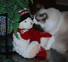 What's This Funny Looking Thing With the Red Mittens? by Carol Clifford