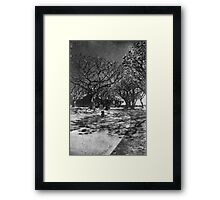 Don't Know Where I'm Going Framed Print