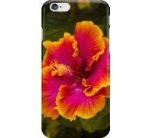 Hawaiian Multi-colored Hibiscus from Kauai iPhone Case/Skin