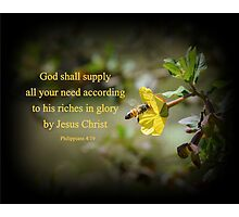 Riches in Glory Photographic Print