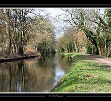 Canal At Peace by Chris Bird