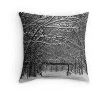 Winter Scenes Throw Pillow