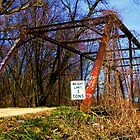 Black Creek Through truss bridge by David Owens