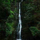 Silverthread Falls by Debra Fedchin