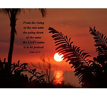 Praising The Lord Photographic Print
