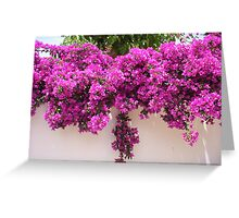 bright blooms Greeting Card