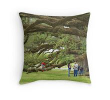 Just Another View Of The Huge Live Oaks Throw Pillow