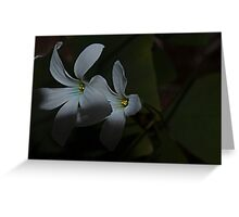 Flowers of Luck  Greeting Card