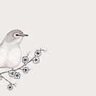 Blossom Finch by samclaire
