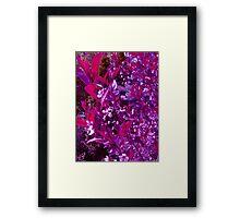 Purple Leaves Framed Print