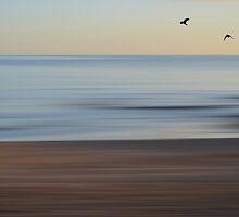 Beach by shalisa
