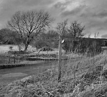 Askrigg 3 1/4 Miles by Lindamell