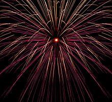 Fireworks by Roma Czulowska
