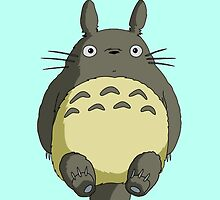 Totoro by KaboodleDoodle