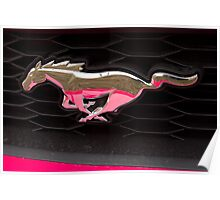 Pink Pony Poster