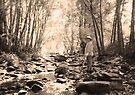 Koreelah Creek by Albert