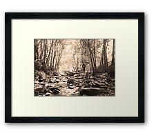 Koreelah Creek Framed Print