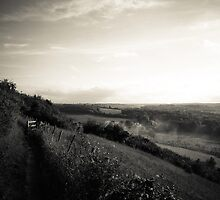 Craggy Path and Country Smoke, Darland Banks, North Downs over Luton, Kent by EdgarCat