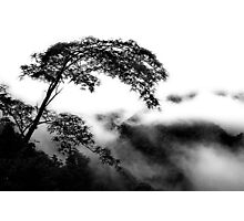 Alone In The Clouds Photographic Print