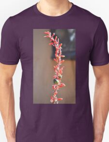 A SINGLE STEM OF THE RED YUCCA CACTUS T-Shirt