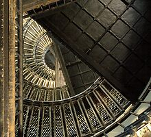Spiral Of Life by Intheraine