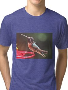 YOUNG MALE WHITE EARED HUMMINGBIRD Tri-blend T-Shirt