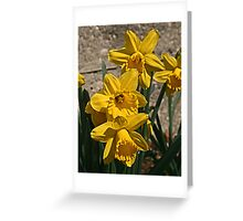 It's Beginning to Look a Lot Like....! Greeting Card