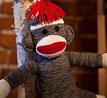 Sock Monkey by Edward Myers