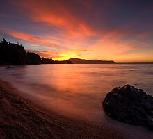 Holdens Bay, Lake Rotorua by Michael Treloar
