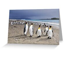The Beautiful, The Magnificent South Georgia Greeting Card