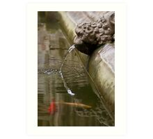 Fountain Detail, Barcelona Cathedral Art Print