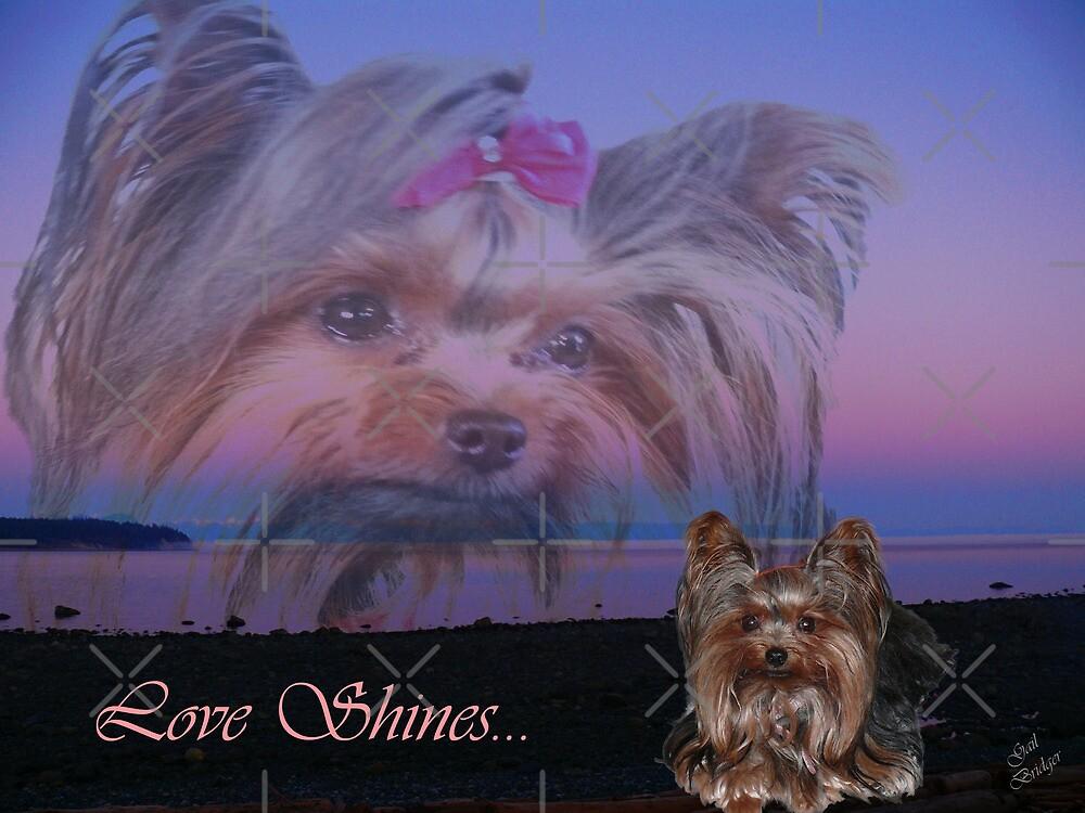Love Shines...In Her Eyes by Gail Bridger