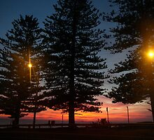 in the morning dark by Juilee  Pryor