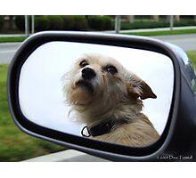 Car Ride Photographic Print