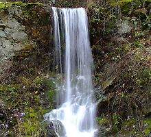 Road-side Waterfall by Dave Tunstall