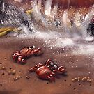 Friendly Crabs by Matt Katz