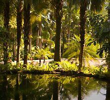 The Green Lagoon by Jena Ferguson