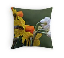 It Rained In My Garden Today Throw Pillow
