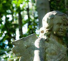Stone Angel by drkelf