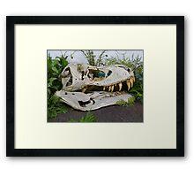 T-Rex Fossil Framed Print