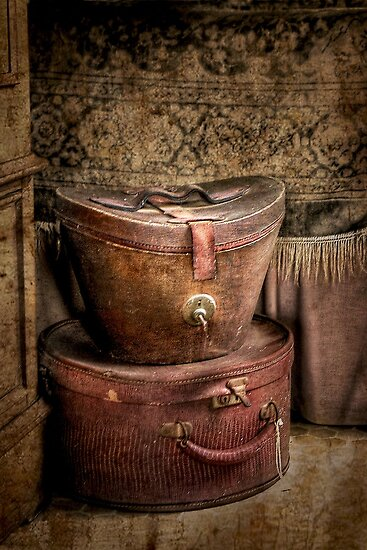 Valise ~ Monte Cristo by Rosalie Dale