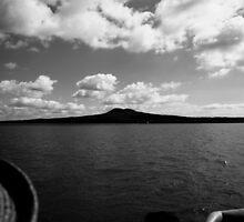 Rangitoto Silhouette by Adam Jones