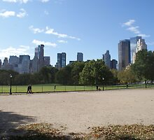 New York - Skyline from Central Park by Jeffrey Lamprey