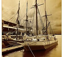 Ye Olde Scow, Auckland by bazcelt