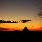 Windella Sunset Panorama- NSW, Australia by Candice Campbell