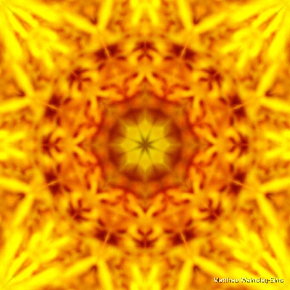 Pollen Dream by Matthew Walmsley-Sims
