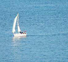 Heading for Harbour by TREVOR34