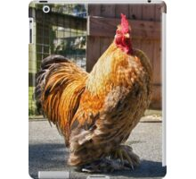 Come Roost Awhile iPad Case/Skin